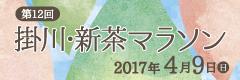 掛川新茶マラソン